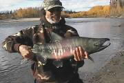 Picture of Salmon Fishing