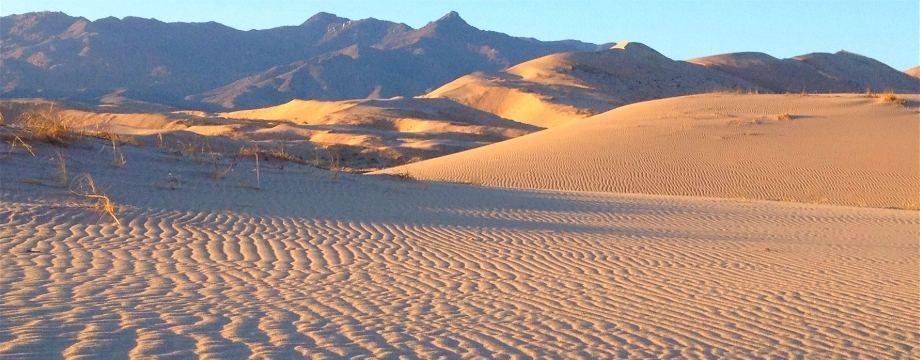 Kelso Dunes, Desert Trail