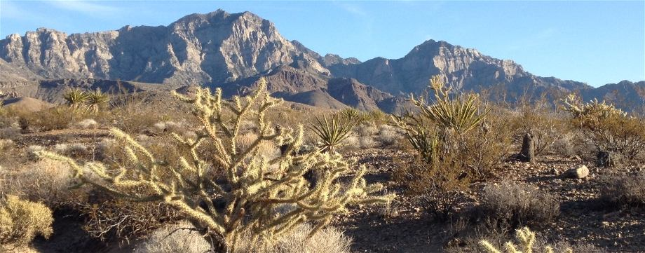 Providence Mountains, Desert Trail