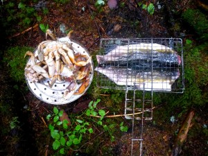 Boiled crab, pink salmon on the the grill